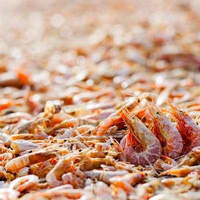 海洋与土地的交响曲——虾米烧芋头